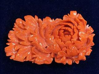 本珊瑚 彫刻 牡丹図 帯留